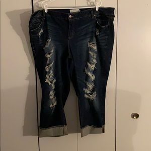 Distressed Torrid denim